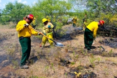 Wildland_Fire_Training